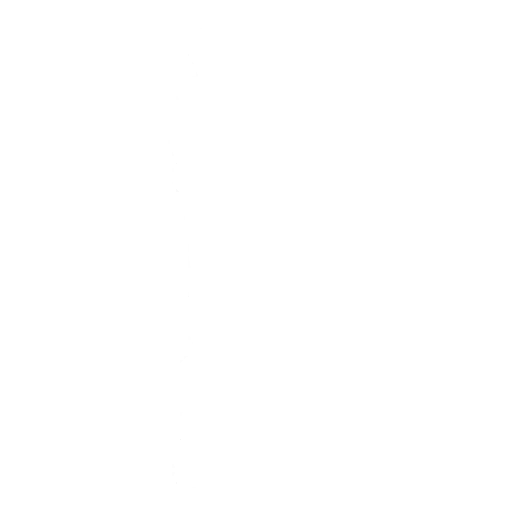 Ninja Style